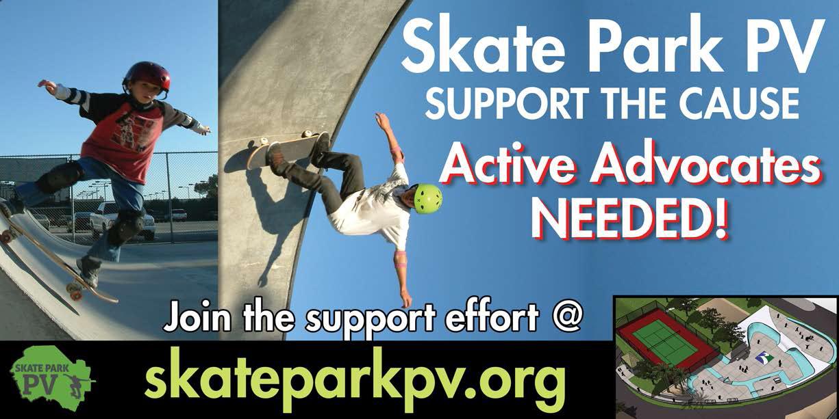 SkateParkPV_V1b
